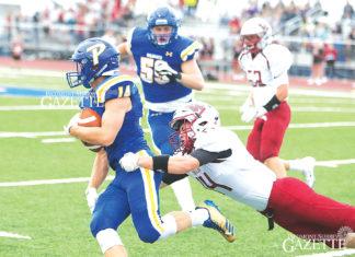 Piedmont high school, wildcats, piedmont tribune